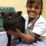 Dr. Houston - Barlow Trail Veterinary Clinic